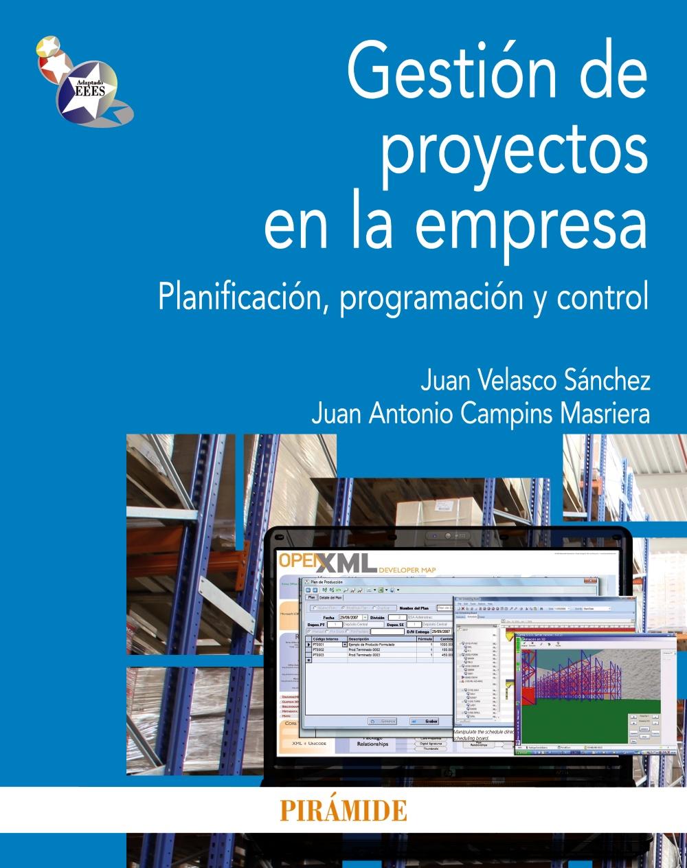 Gestión de proyectos en la empresa (ebook)