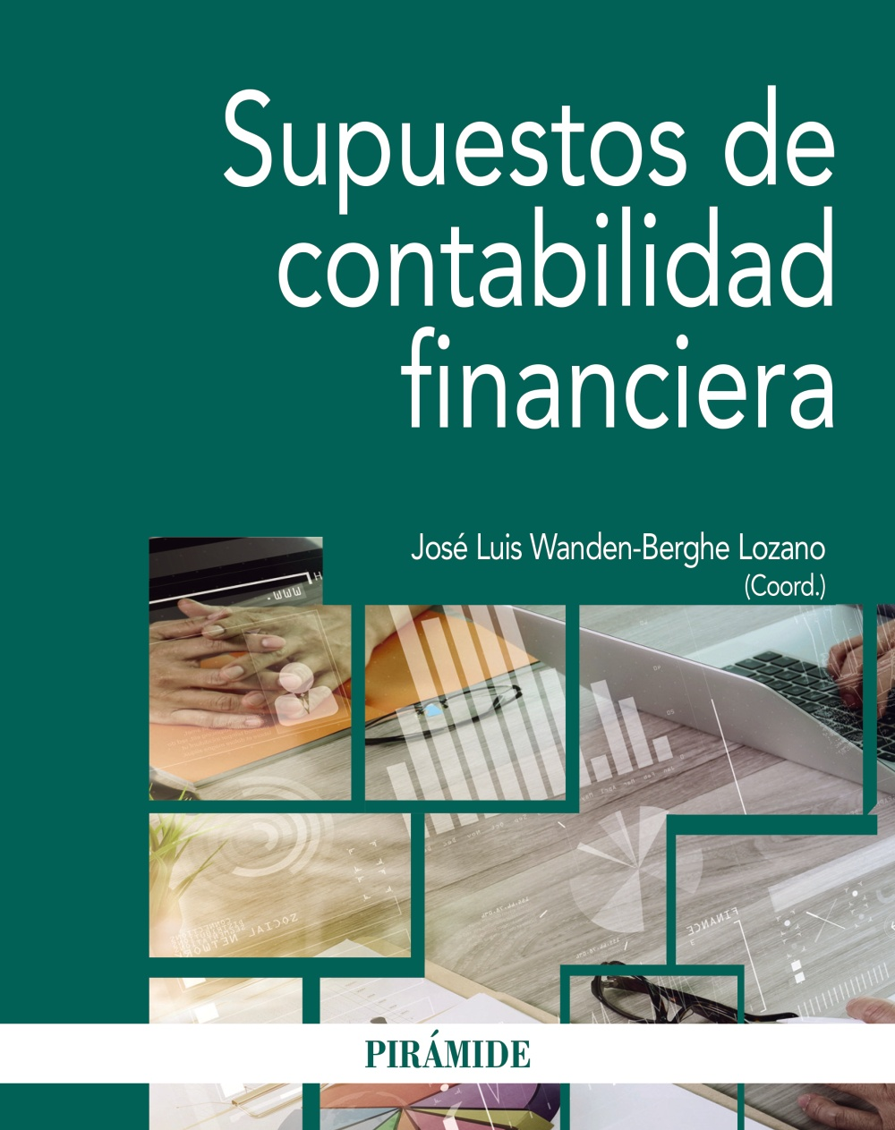 Supuestos de contabilidad financiera (ebook)